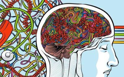 9 fascinujících faktů o bloudivém nervu
