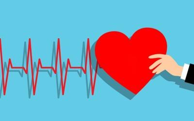 Lidé, kteří cvičí jógu, mají zdravé srdce