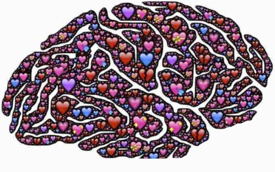 Moudrost je záležitost jak Srdce tak Mysli