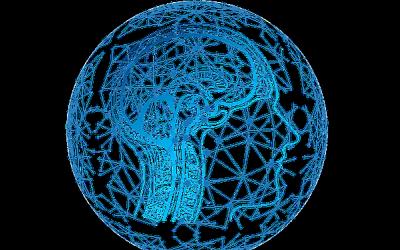 Jak zážitky a zkušenosti mění plasticitu mozku