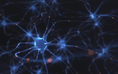 Jak autonomní nervový systém ovlivňuje zdraví?